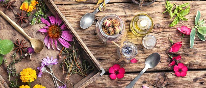 Kruiden homeopathie